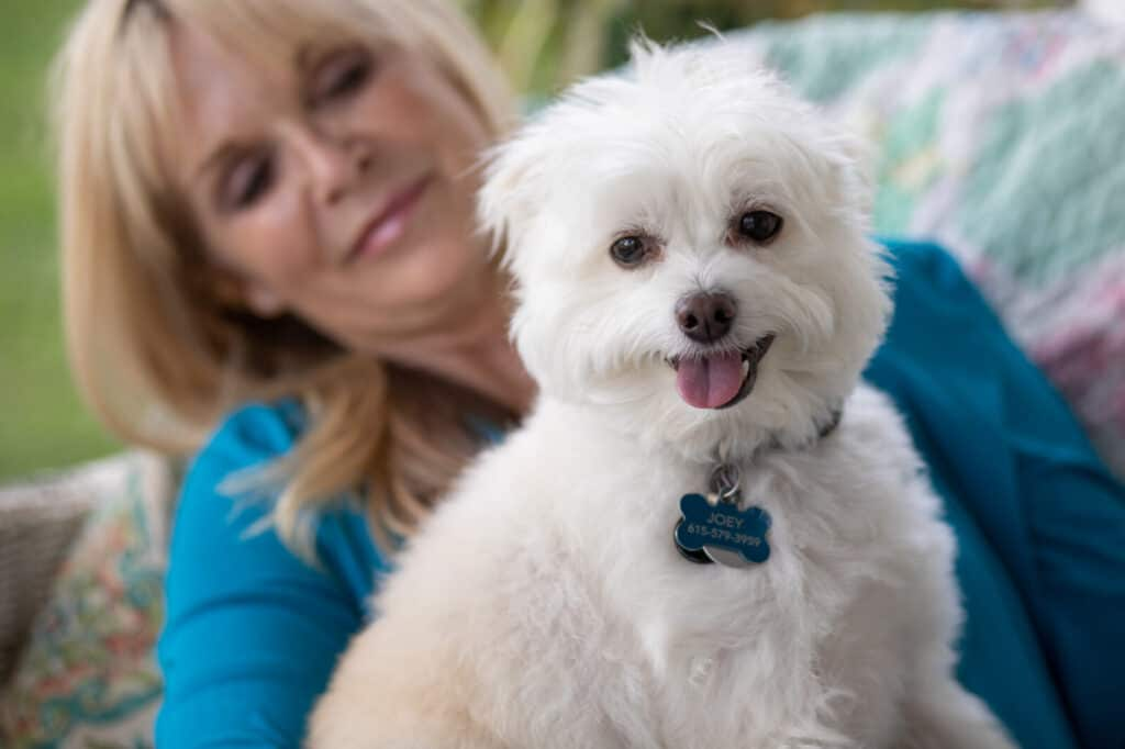 Blond woman in background holding a white fluffy dog